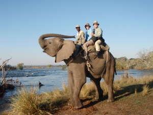 Riding Mashumbi in Zambia