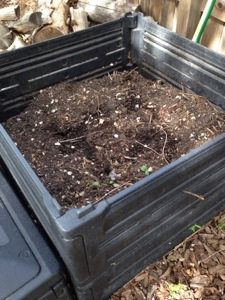 Dirt from our composted veggies