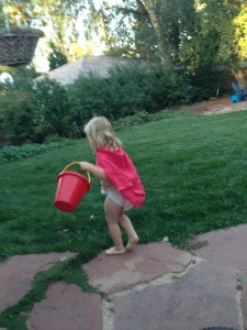 Backyard Superhero Adventures