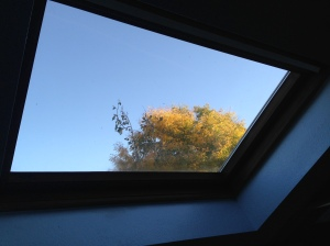Ordinary brilliance from my bathroom skylight